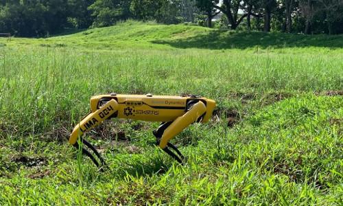 Spot, the four-legged robot dog.